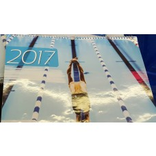 swimsport Kalender 2017